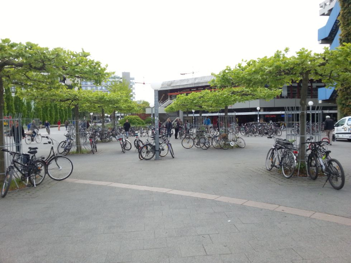 Some bikes parked in front of the Neuenheimer Feld campus of Heidelberg University.