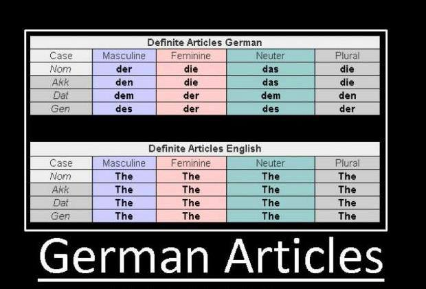 German's definite articles compared to English's